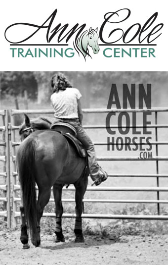 photo of ann cole horse